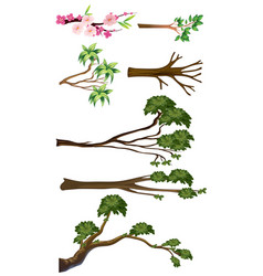 different types of branches vector image