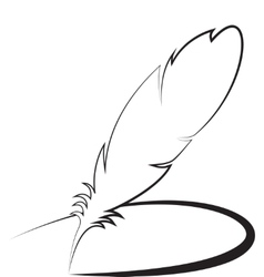 Feather with line vector