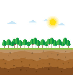 soil profiles with trees vector image