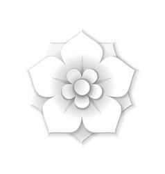 white paper flower vector image