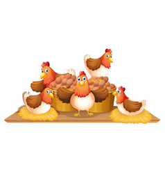 chickens and eggs in basket vector image vector image