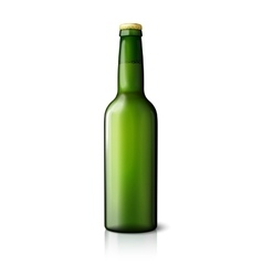 Blank green realistic beer bottle isolated on vector image