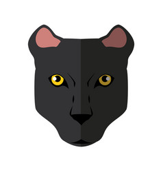 wild animal jaguar vector image