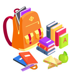 Collection of school-related objects on white vector