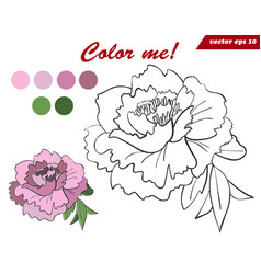 coloring book page for children and adults with vector image