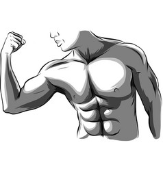 man with muscles sexy bearded muscular vector image