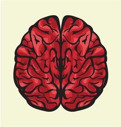 Mozak odozgoCOLOR vector