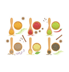 spices in wooden bowl set svanuri marili vector image