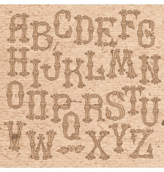 Whimsical Hand Drawn Alphabet Letters vector image