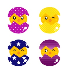 Spring chicken in eggs vector image vector image