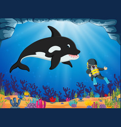 A brave diver is looking the big dolphin vector
