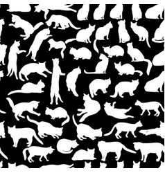 cats seamless pattern kitten silhouettes pet vector image