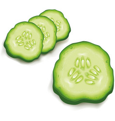 Cucumber slice isolated on white vector
