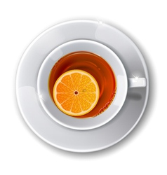 Cup with tea vector image