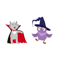 Flat cat dracula and owl in witch hat set vector