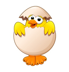 Funny chick in the egg vector