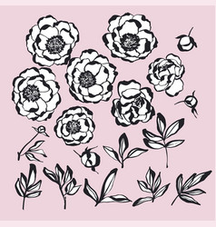 Hand drawn ink style flowers kit vector