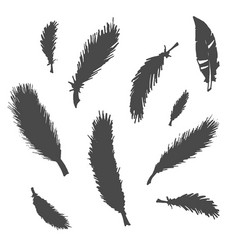 hand drawn sketch of abstract feather vector image