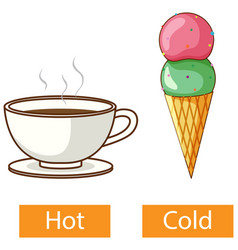 Opposite adjectives words with hot and cold vector