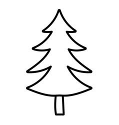 pine tree foliage botanical decoration line style vector image