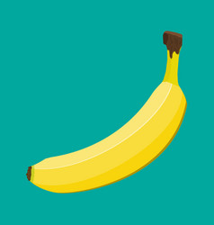banana isolated on green vector image