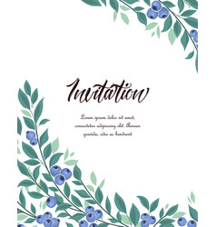 background blueberries fruit vector image
