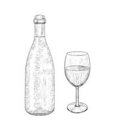 botlle wine with a glass hand drawn sketch vector image