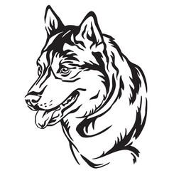 Decorative portrait of dog siberian husky vector