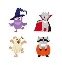 Flat halloween dressed up animals set vector