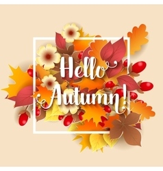 Hello Autumn Background vector image