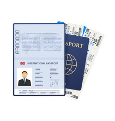 Passport with tickets air travel concept flat vector