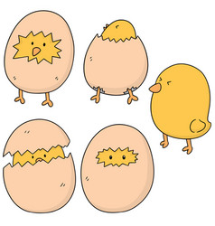Set of chick vector