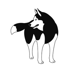 Siberian Husky silhouette on a white background vector