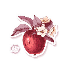 sticker with hand drawn apple branch vector image