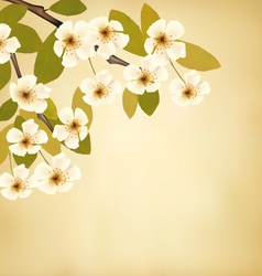 Vintage background with blossoming tree brunch and vector image