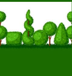 boxwood topiary garden plants seamless border vector image vector image