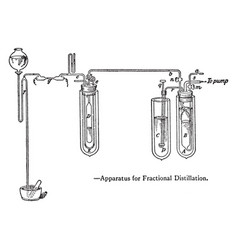 apparatus used for fractional distillation vintage vector image