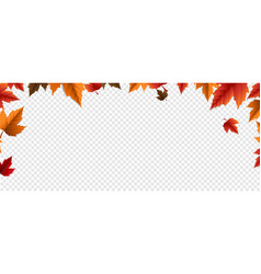 Autumn banner with colorful leaves transparent vector