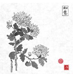 chrysanthemum flowers in oriental style on rice vector image