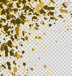 confetti explosion effect isolated on transparent vector image