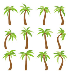 set of sixteen different cartoon palm trees vector image