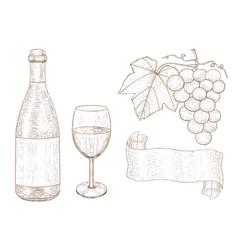 wine set botlle of wine glass grapes hand vector image