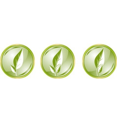 glossy buttons with leaves vector image vector image