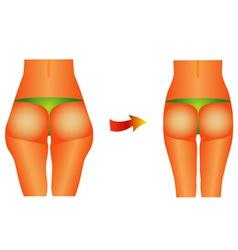 Female buttocks vector image