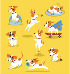 Cute jack russell terrier set funny pet dog vector