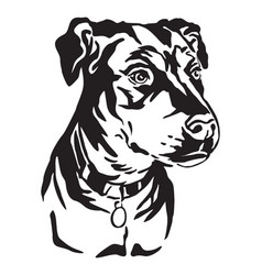Decorative portrait mongrel dog vector