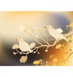 myna birds vector image
