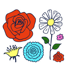 six colorful beautiful flowers vector image