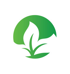 logos of green leaf ecology vector image vector image