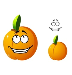 Cute orange apricot cartoon character vector image